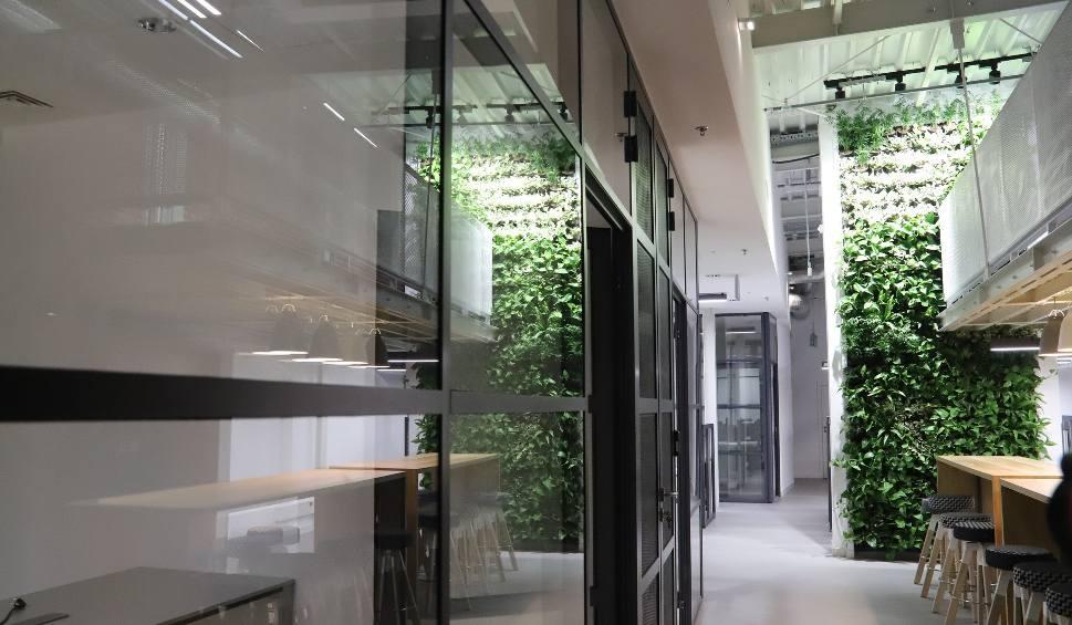 Film do artykułu: Off Piotrkowska: Nowe biurowce Sepia Office i Teal Office oficjalnie otwarte [FILM]