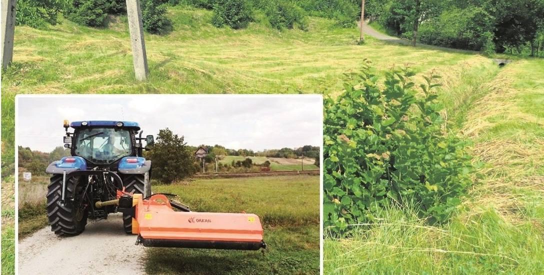 Skoszona łąka w Rzykach. Wcześniej rosła w tym miejscu trawa wysoka na ponad 1,7 metra