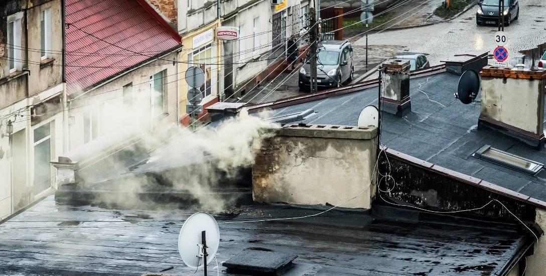 Badania pokazały, że odpady w swoich piecach spalają najczęściej nie mieszkańcy kamienic w centrum Bydgoszczy, a właściciele domów jednorodzinnych na