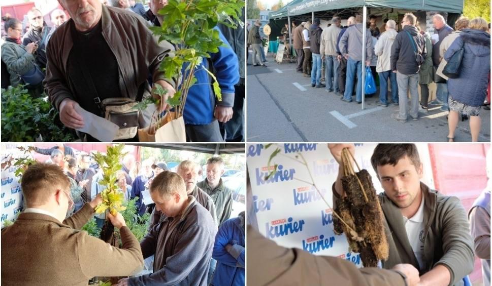 Film do artykułu: Drzewko za makulaturę. Czekamy na Was przy ul. Zana i Turystycznej! (ZDJĘCIA, WIDEO)
