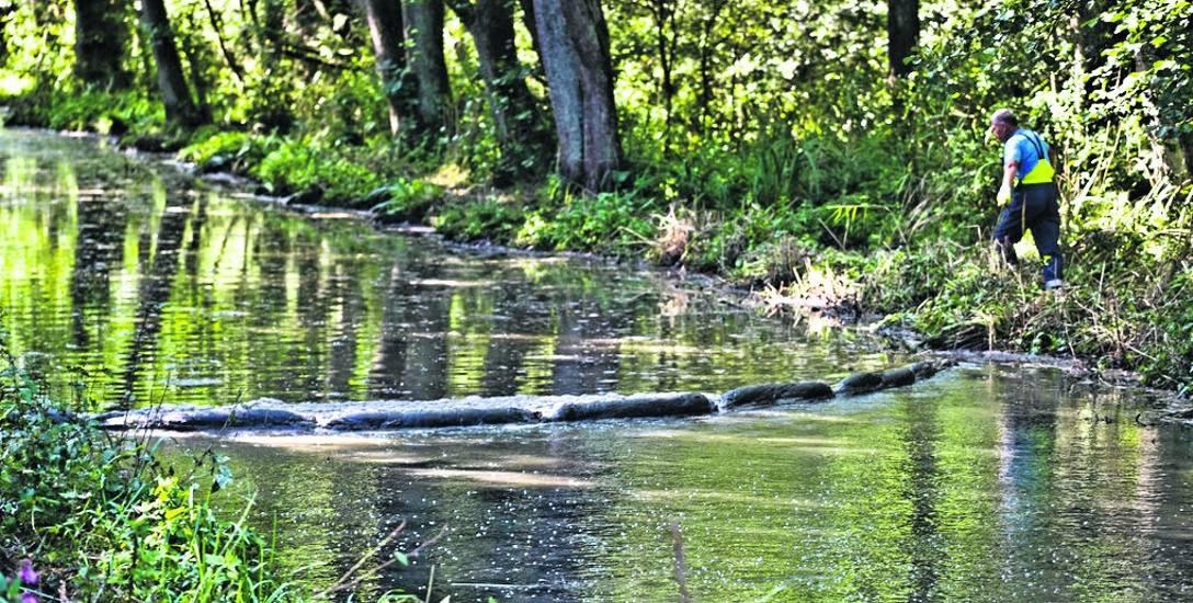 Piana, czy ścieki? Brudny kanał między Jarosławcem a Jezierzanami zaniepokoił mieszkańców