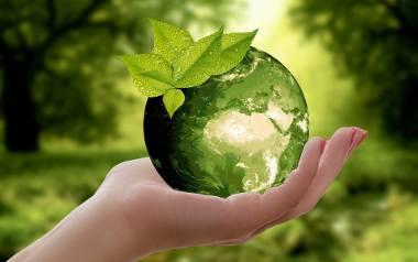 Ważne jest, aby dbać o nasz klimat. Dlatego warto ograniczyć zużywanie plastiku i niepotrzebnych śmieci. Filozofia zero waste powstała właśnie po to,