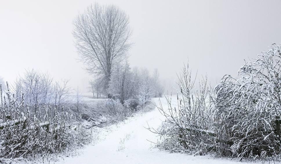 Film do artykułu: Prognoza pogody na sobotę. Ostrzeżenie meteorologiczne dla Łodzi i województwa na 13 lutego. Prognoza pogody na 13.02.2021