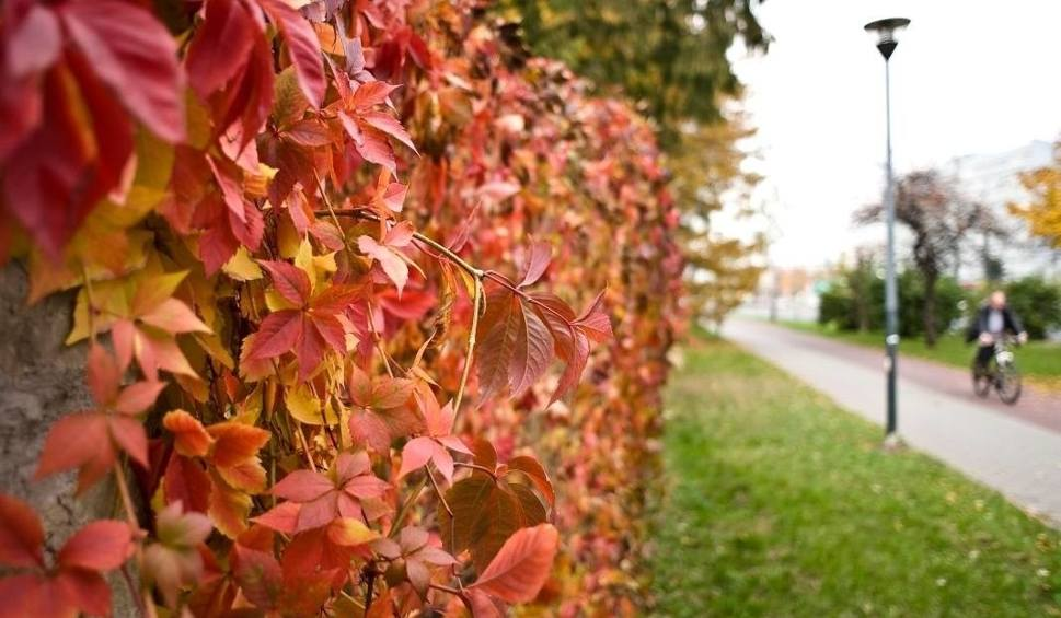 Film do artykułu: Pogoda w weekend w Szczecinie i nad morzem. Czy będzie ciepło? Zobacz PROGNOZĘ POGODY