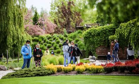 Piękna wiosna w Ogrodach Kapias.Zobacz kolejne zdjęcia. Przesuwaj zdjęcia w prawo - naciśnij strzałkę lub przycisk NASTĘPNE