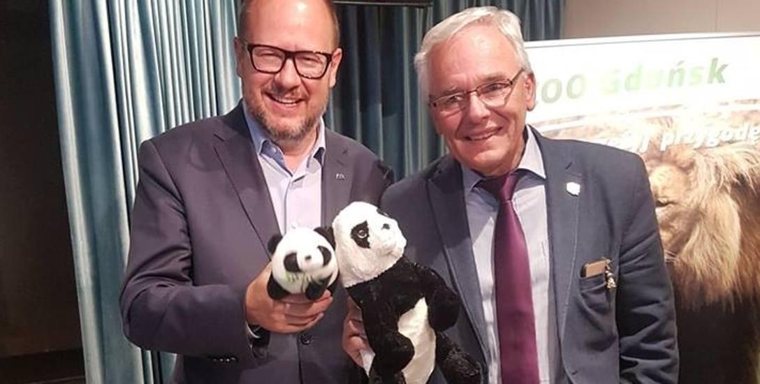 """Do gdańskiego ZOO trafią pandy? """"Płacenie Chińczykom haraczu za biedne i poczciwe zwierzę w klatce"""""""