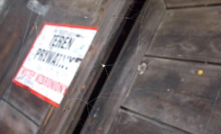Wejściowe drzwi do spichlerza są osłonięte pajęczyną...