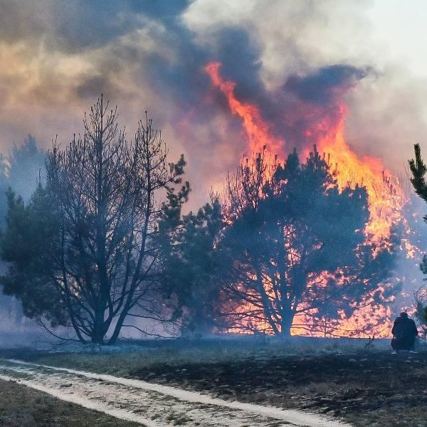 Gigantyczny pożar w Fordonie został wywołany około godziny 15-tej. - Pierwsze zgłoszenie trafiło do nas o godzinie 15.04, chwilę później pierwsze zastępy