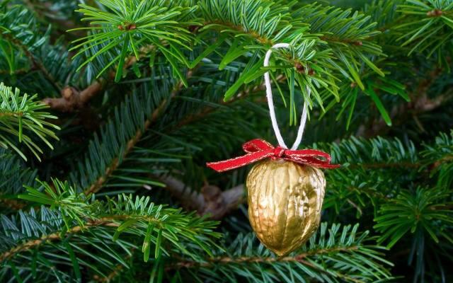 Dawniej na bożonarodzeniowym drzewku zawieszano orzechy, jabłka, ciasteczka i kawałki opłatka oraz ozdoby z papieru, czy słomy.