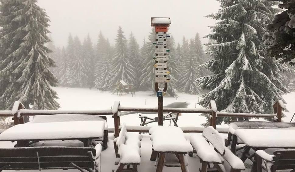 Film do artykułu: Kiedy spadnie śnieg? W górach jest już biało. Na Hali Lipowskiej leży kilkanaście cm białego puchu