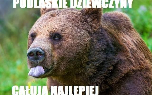 Walentynki 2018 Porannypl