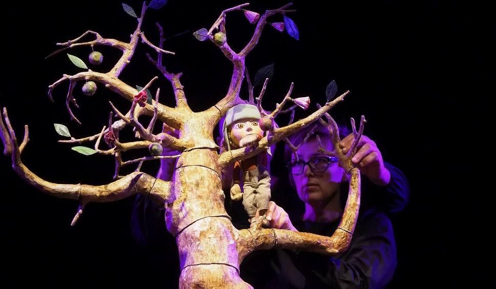Film do artykułu: BTL. IX Międzynarodowy Festiwal Szkół Lalkarskich 2018 LALKANIELALKA. The Key Theatre - Kiedy wszystko było zielone  (zdjęcia, wideo)