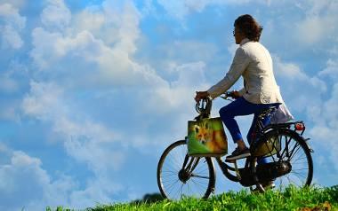 Organizując wyprawę rowerową, należy zaopatrzyć się w odpowiednie rzeczy, takie jak: sprzęt naprawczy, apteczkę i prowiant.