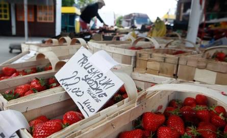 Sezon na truskawki wkrótce - rolnicy martwią się o brak rąk do pracy. Ukraińcy mogą u nas pracować nawet na kwarantannie