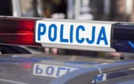 Kradli gry na konsolę w Skierniewicach