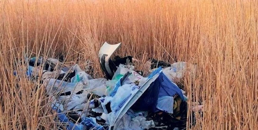 Wysypisko przy ul. Kwiatów Polskich. W trzciny wyrzucono odpady, które najwyraźniej pochodziły z jakiegoś warsztatu