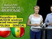 Polska - Senegal. Kogo boją się Senegalczycy i czyi kibice piją więcej oglądając mecz? Magazyn Sportowy mundial na mecz Polska - Senegal