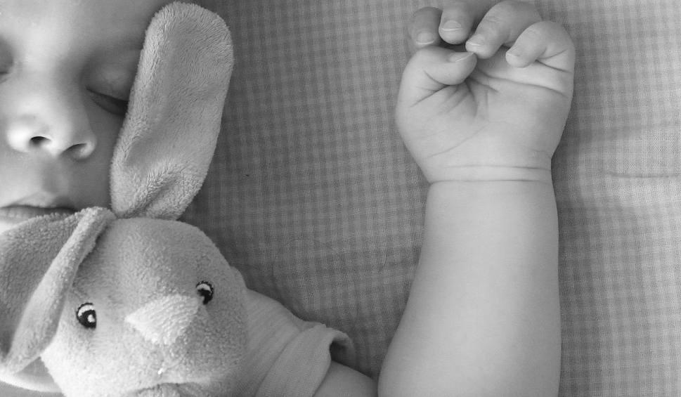 Film do artykułu: Opiekunka z Polski oskarżona o zabójstwo 11-miesięcznego dziecka w USA. Zatrzymana pod Bydgoszczą