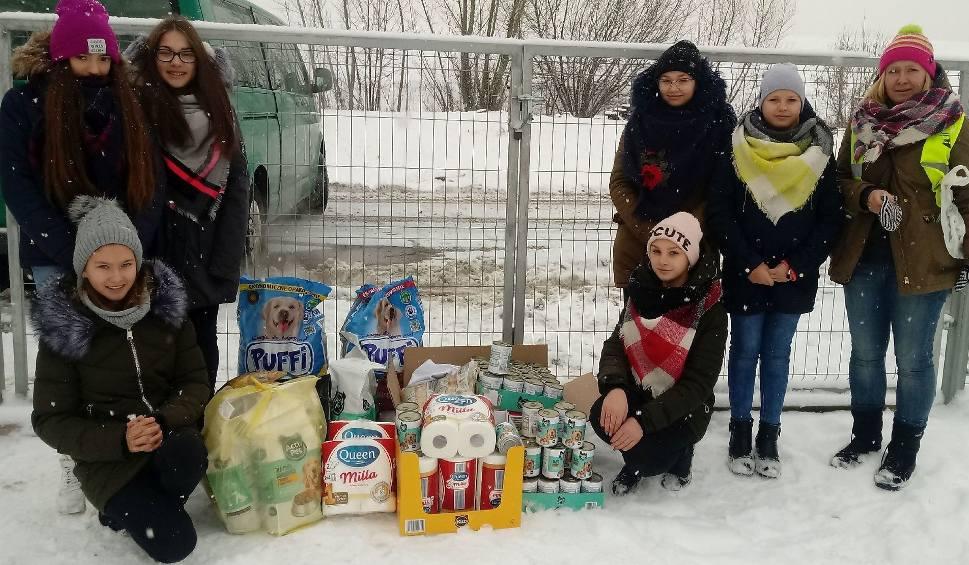 """Film do artykułu:  Akcja """"Razem na święta"""" - w szkole w Ujeździe zbierali dary dla podopiecznych Przytuliska na Wiśniowej [ZDJĘCIA]"""