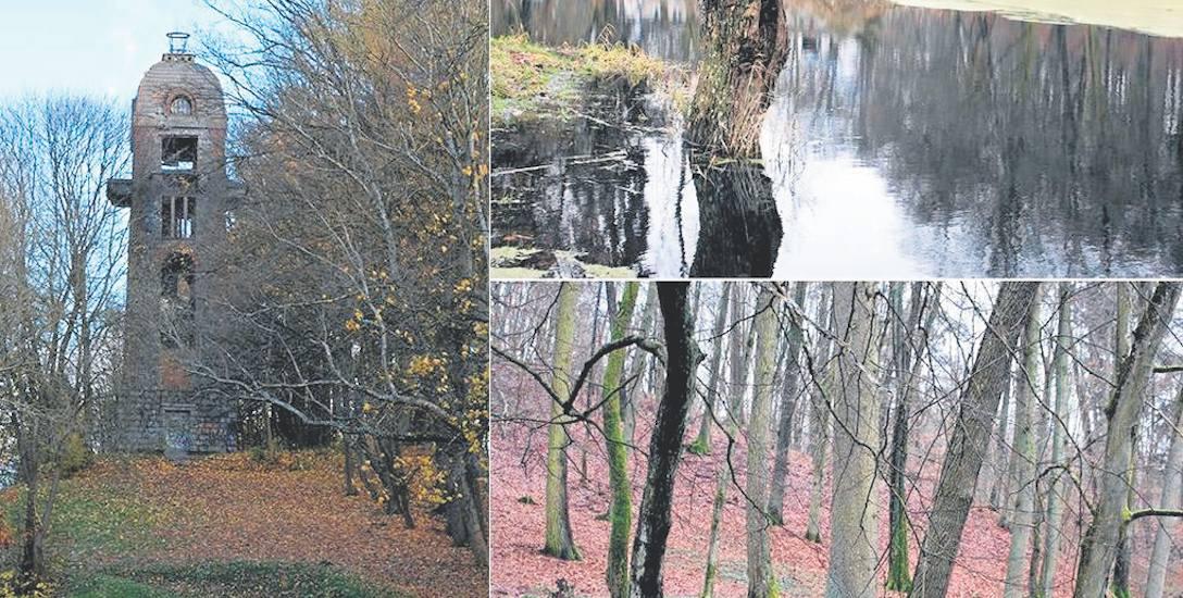 Park w Świdwinie odzyska dawny blask. Jest to bez wątpienia jedna z najważniejszych inwestycji