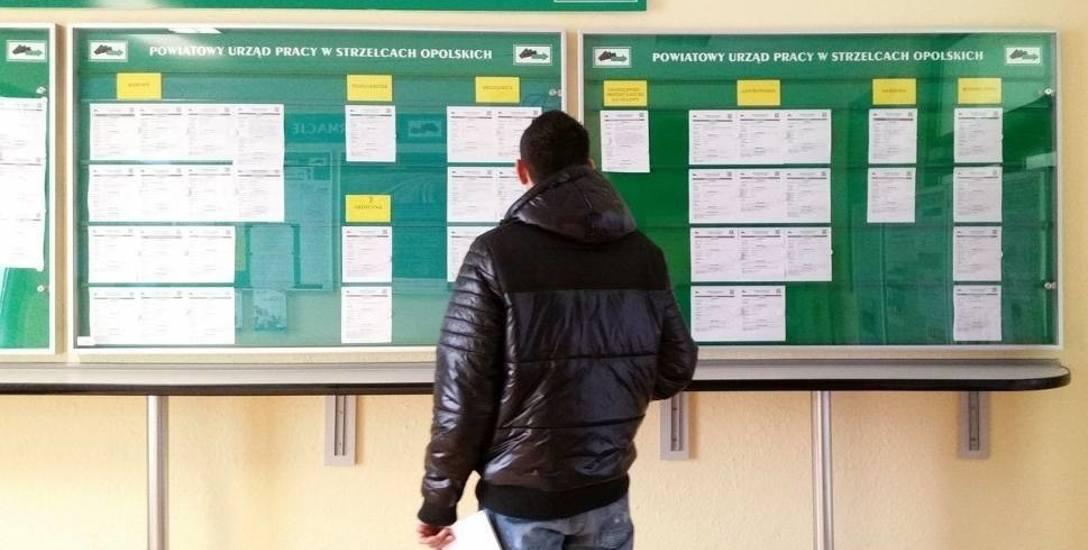 W listopadzie 2017 r. w rejestrach urzędów pracy było 24 973 osób, a stopa bezrobocia ukształtowała się na poziomie 6,9 proc.