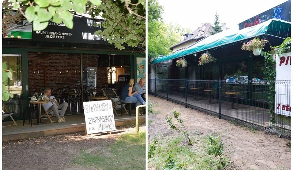 """Film do artykułu: ZUK zastosował radykalne rozwiązanie i ustawił płot przed wejściem na taras kawiarni """"Cafe pod Ptakami"""" [ZDJĘCIA]"""
