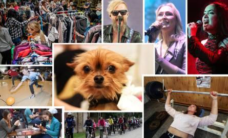 Prezentujemy niektóre imprezy, odbywające się w Bydgoszczy od piątku (19 października) do niedzieli (21 października). W weekend nie zabraknie wydarzeń