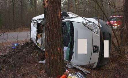Peugeot uderzył w drzewo. 19-latek nie żyje (zdjęcia)