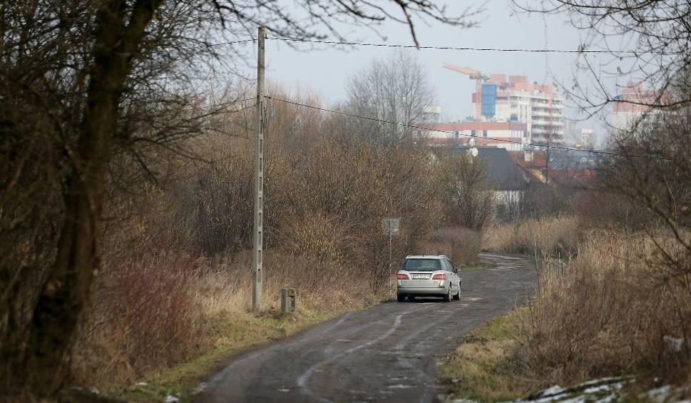 Film do artykułu: Kraków. Wąż gniewosz namiesza w planach budowy bloków na Zakrzówku?
