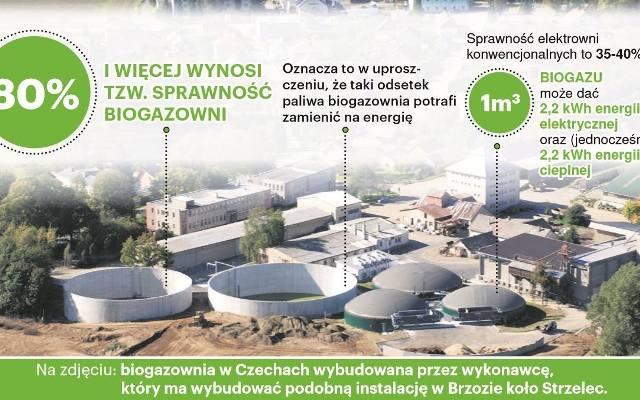 Strzelce Krajeńskie. Mieszkańcy boją biogazowni