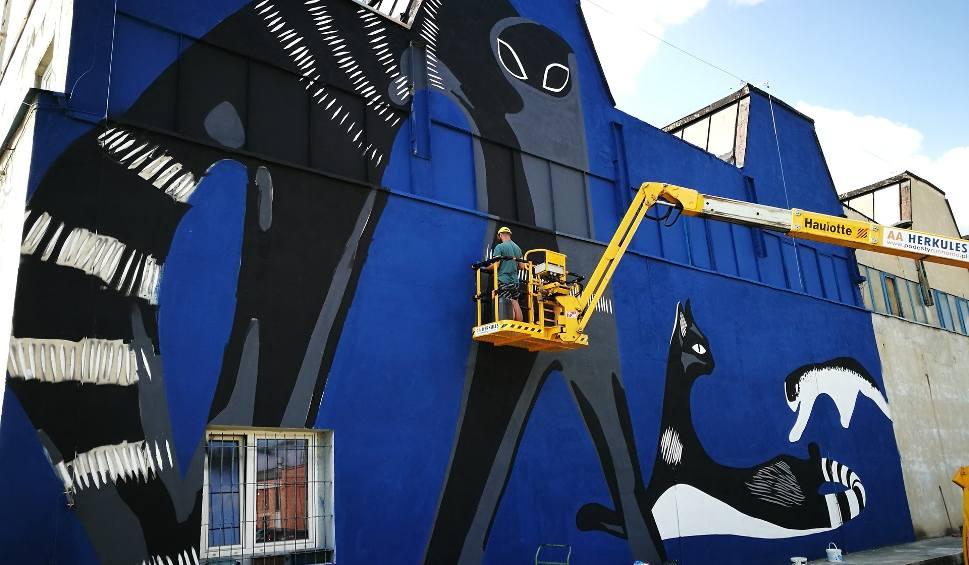 Film do artykułu: Mural z kotem w Katowicach w Fabryce Porcelany. New look, Artur Wabik i kultowe porcelanowe koty Mieczysława Naruszewicza. Street Art AiR