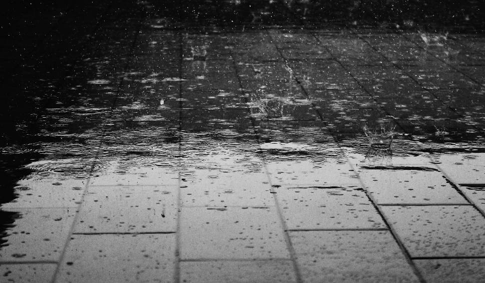 Film do artykułu: Pogoda w Łodzi i regionie. Sprawdź prognozę na piątek [WIDEO]