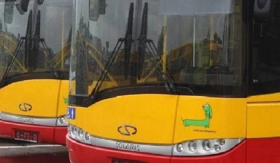 Film do artykułu: Utrudniena w centrum Kielc w niedzielę na bieg, autobusy też pojadą inaczej