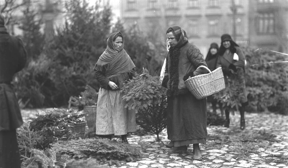 Film do artykułu: Sprzedaż choinek i gałązek choinkowych w Krakowie [ARCHIWALNE ZDJĘCIA]