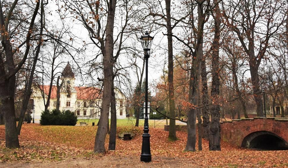 Film do artykułu: Tarnobrzeg. W parku dzikowskim stanęły latarnie. Rozproszą ciemności wokół zamku [ZDJĘCIA]