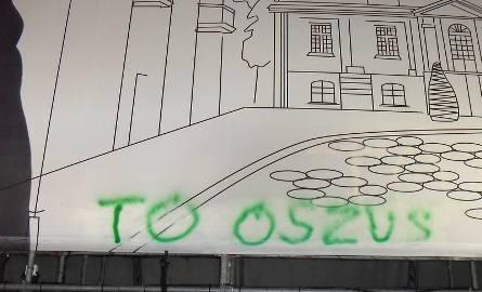 Wybory 2010: Rafał K. zatrzymany. Zielony zniszczył plakat wyborczy Tadeusza Truskolaskiego. (zdjęcia)