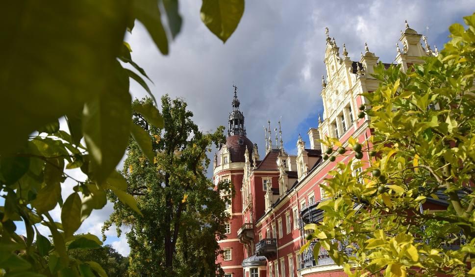 Film do artykułu: Park Mużakowski jest piękny przez cały roK! Zobacz, jak wygląda jesienią!