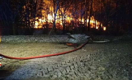 Knis. 11 zastępów straży pożarnej walczyło z groźnym pożarem (zdjęcia)