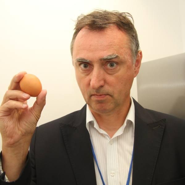 Skażone jajka znaleziono w wielu świętokrzyskich sklepach! Zobacz gdzie