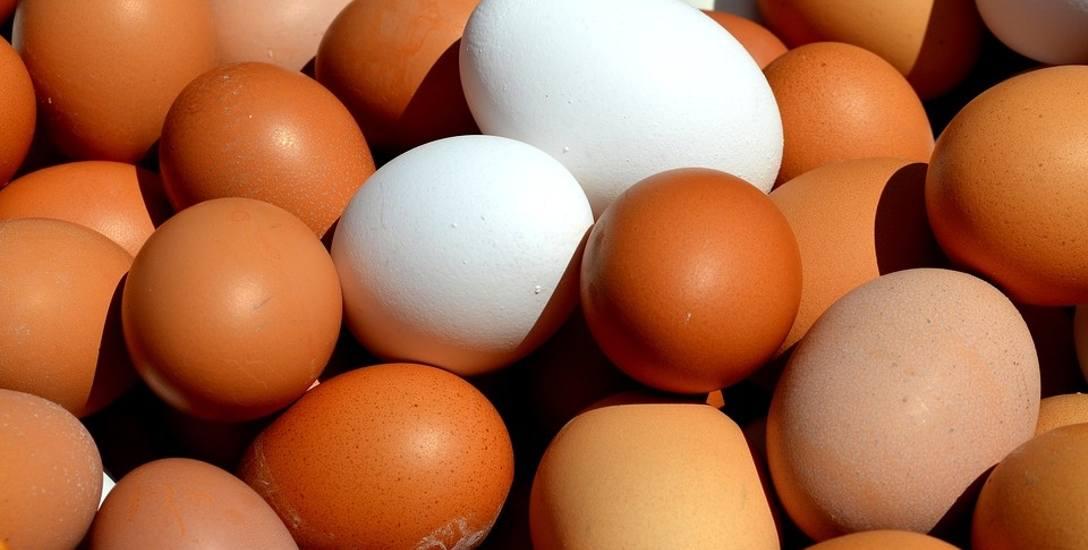 Jajeczna demokracja