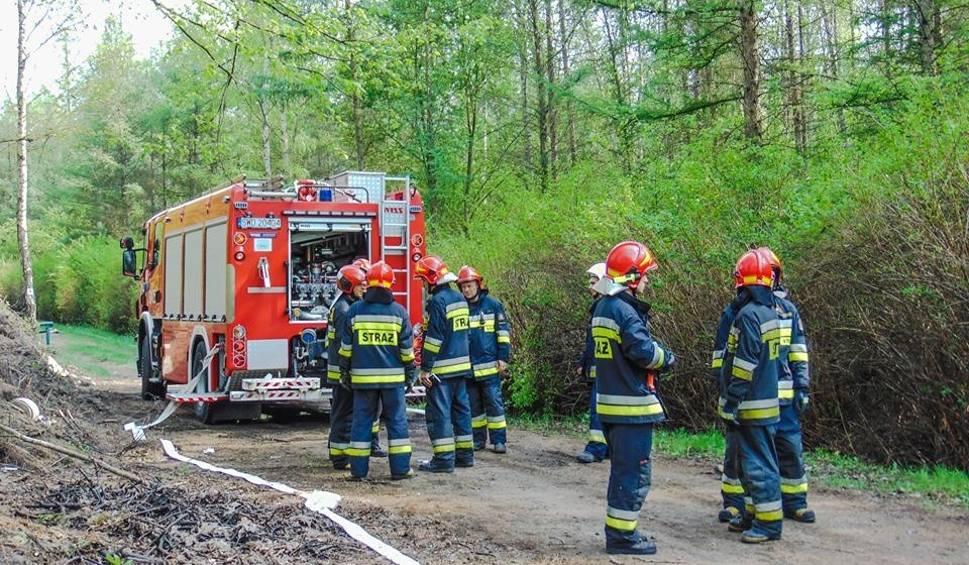 Film do artykułu: Strażacy gasili pożar lasu na Sosinie. Na szczęście to były tylko ćwiczenia ZDJĘCIA