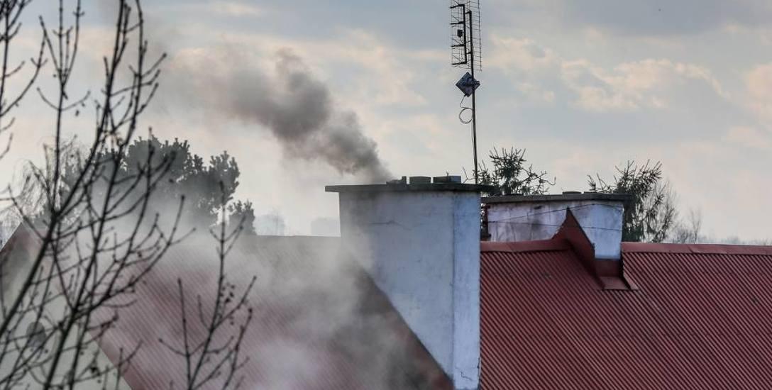 Pomorskie miasta walczą ze smogiem w powietrzu