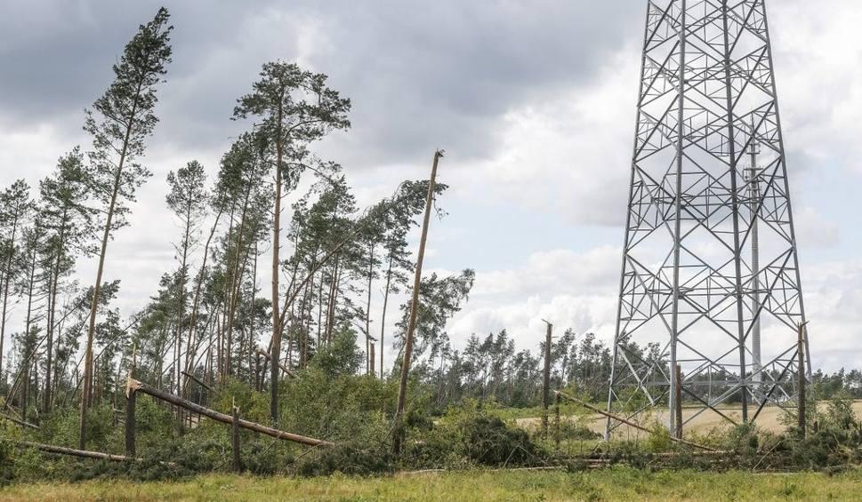 Film do artykułu: Masowa awaria prądu na Pomorzu. Prawie 25 tys. odbiorców nadal bez prądu. Dodatkowe numery telefonów