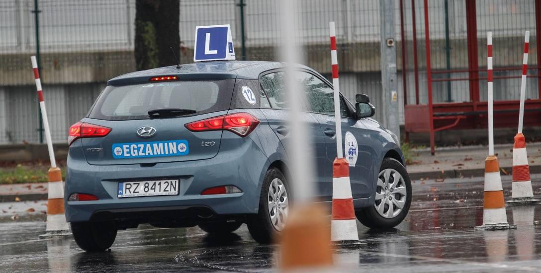 Prawo jazdy powinno kosztować więcej? Tak uważają dyrektorzy WORD i piszą do rządu