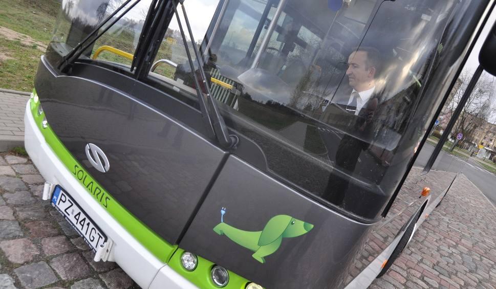 Film do artykułu: Gigantyczna dotacja na szczecineckie autobusy na prąd