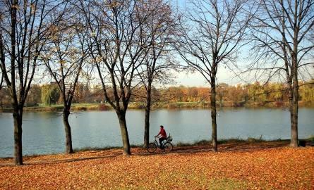Dolina Trzech Stawów w Katowicach to popularne miejsce spacerów, ale też doskonałe do jazdy na rowerze i rolkach