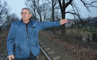 """-Czy tam """"na górze"""" ktoś wogóle myśli wydając takie decyzje o całkowitym ogołoceniu miasta z drzew - pyta Jerzy Krakowski?"""