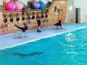 Delfinoterapia i tresowane foki, czyli atrakcje ukraińskiego Truskavca [FILM]