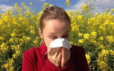 Prawie każdy jest na coś uczulony lub zna kogoś, kto jest alergikiem. Czy ten fakt w powiązaniu z powszechnym dostępem do internetu wystarczy, aby stać