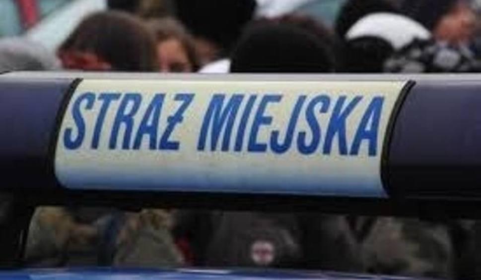 Film do artykułu: Kupcy i mieszkańcy centrum Kielc chcą likwidacji Straży Miejskiej. Co na to władza?